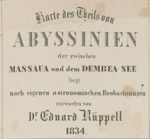 название тигре - амхара 1834